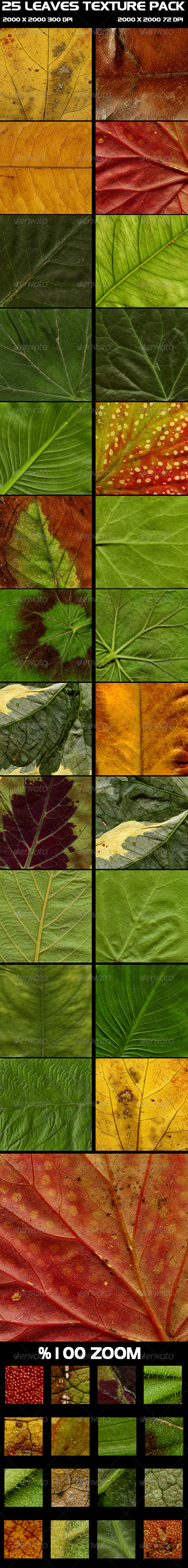 25 Leaves Texture Pack - Nature Textures