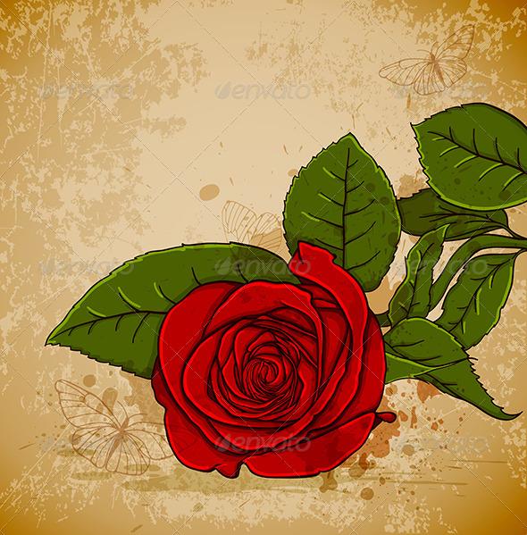 Vintage Red Rose - Flowers & Plants Nature