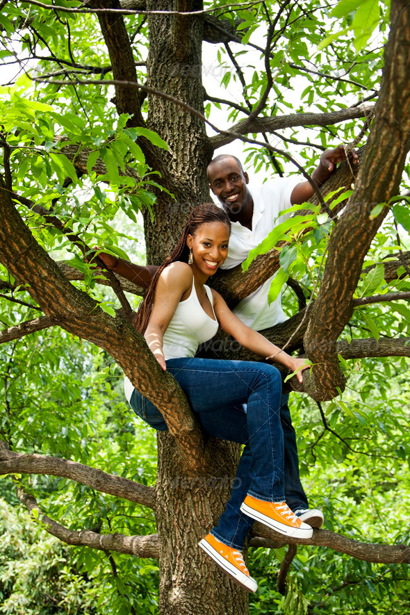 Happy fun African couple in tree - Stock Photo - Images