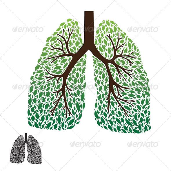Leaf Lung - Health/Medicine Conceptual