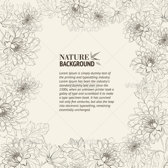 Frame of Chrysanthemum - Flowers & Plants Nature