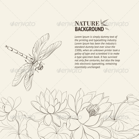 Lotus Flower and Dragonfly - Flowers & Plants Nature