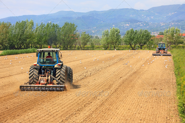 two tractors farming in field - Stock Photo - Images