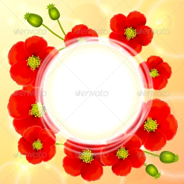 Red Poppy Flowers Vector Round Background - Flowers & Plants Nature