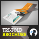 My Services - Tri-fold Square Brochure 1 - GraphicRiver Item for Sale