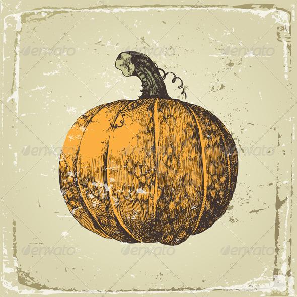 Pumpkin - Food Objects