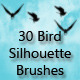 30 Bird Silhouette Brushes - GraphicRiver Item for Sale