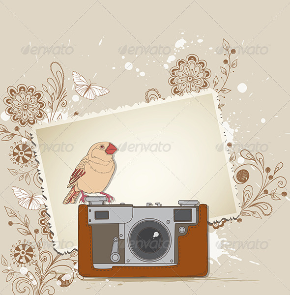 Old Camera and Bird - Backgrounds Decorative