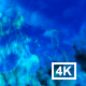 Blue Smoke 4k - VideoHive Item for Sale