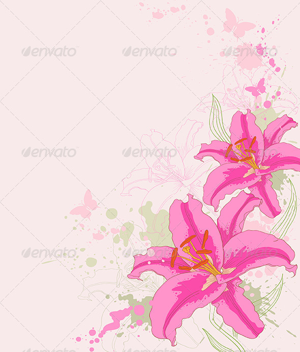 Floral Background with Pink Lily - Flowers & Plants Nature