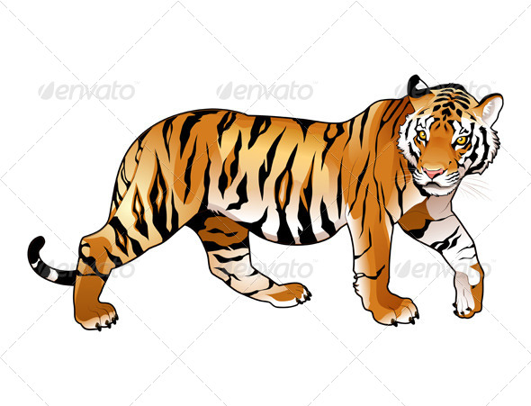 Red Tiger.  - Animals Characters
