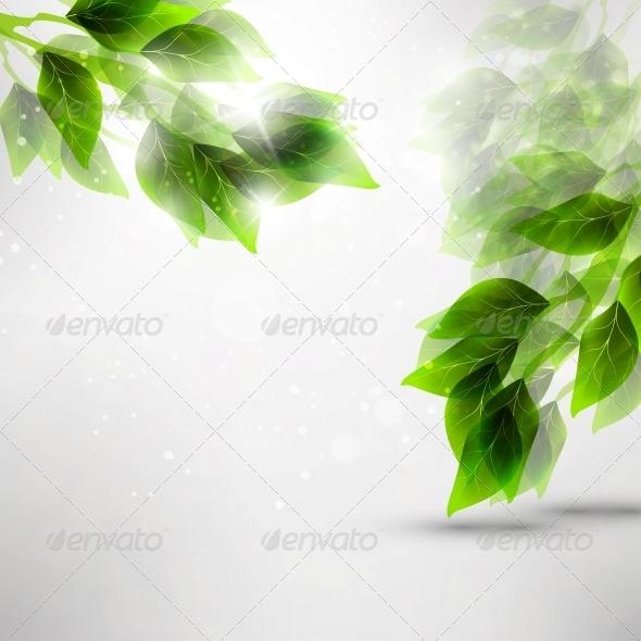 Beautiful Green Leaves - Seasons Nature