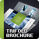Trifold Brochure - Vol. 1 - GraphicRiver Item for Sale