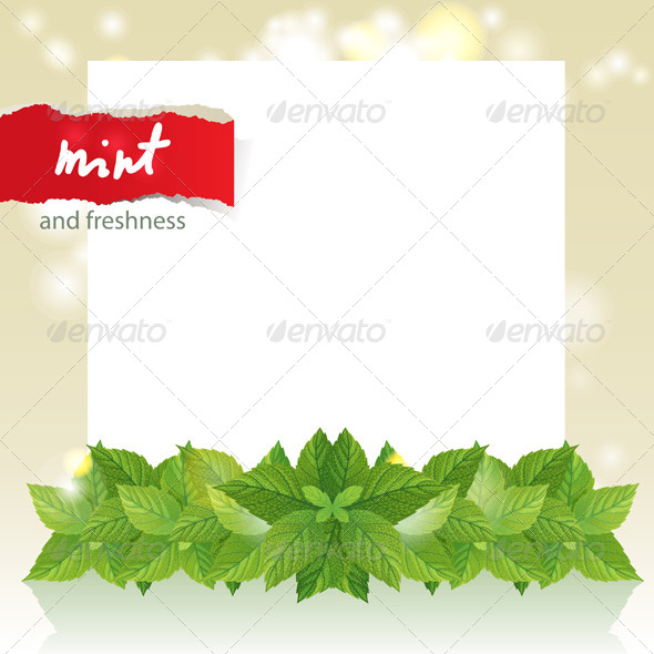 Abstract Background with Mint - Flowers & Plants Nature