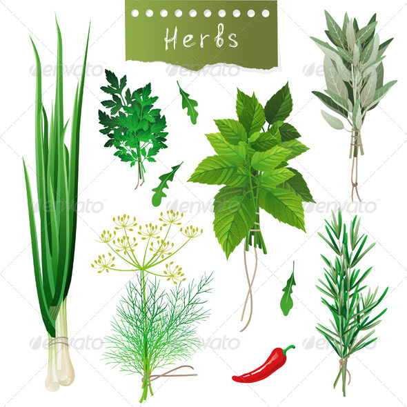 Herbal Bunches - Food Objects