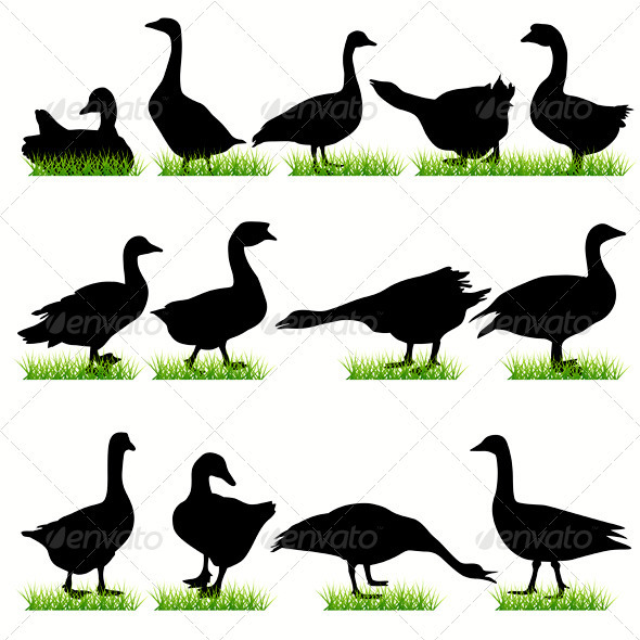 Gooses Silhouettes Set - Animals Characters