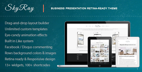 Skyray - Business Presentation Retina Theme - Corporate WordPress