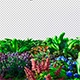 Plants and Flowers - VideoHive Item for Sale