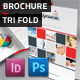 Dynamic 4 Page Brochure & Tri Fold - GraphicRiver Item for Sale