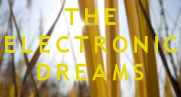 The Electronic Dreams