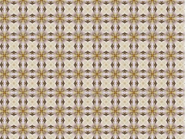 Vintage Background with Classy Patterns - Patterns Decorative