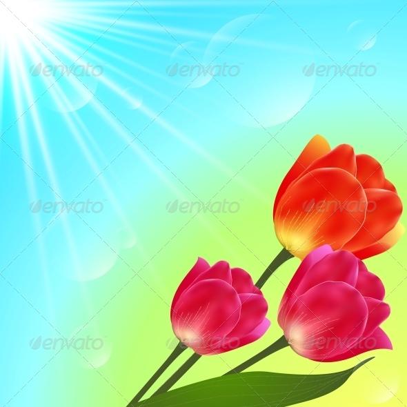 Vector Sunny Tulip Flowers Bouquet Card Template - Flowers & Plants Nature