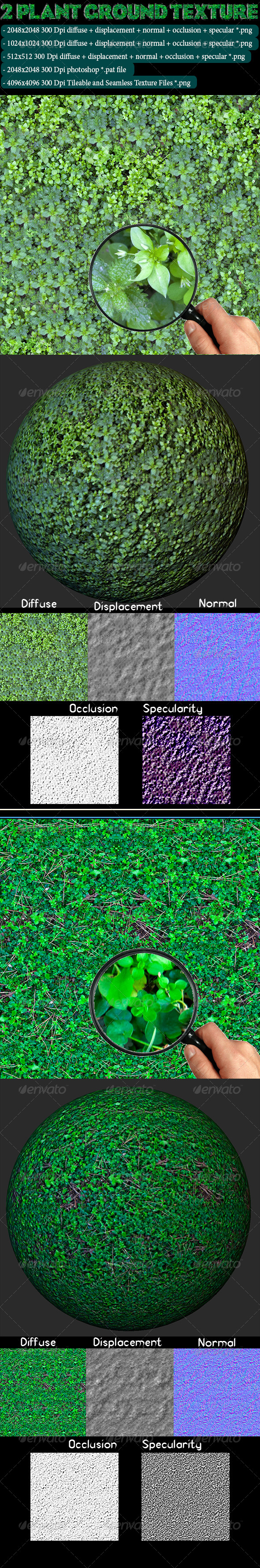 2 Plant Ground Texture - 3DOcean Item for Sale