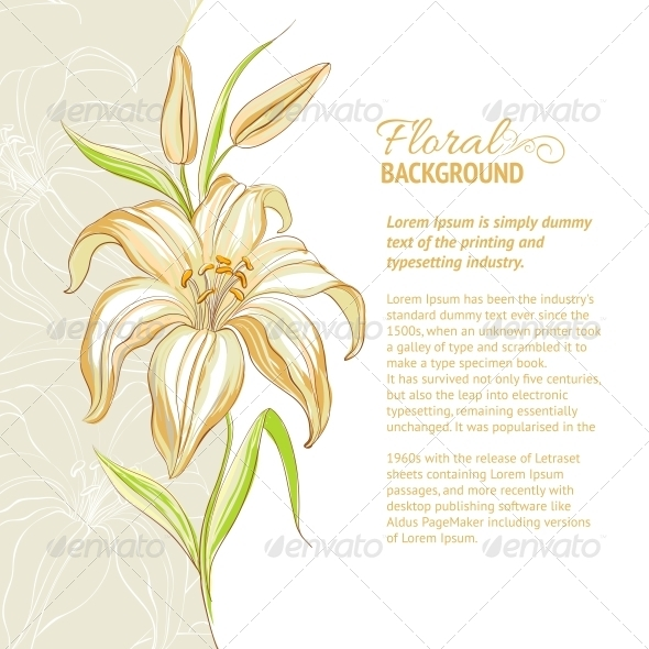 Lily Flower Background. Vector Illustration - Flowers & Plants Nature