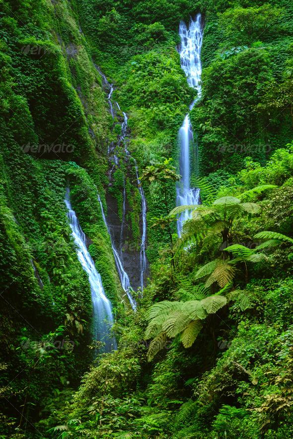 Madakaripura  Waterfall, East Java, Indonesia - Stock Photo - Images
