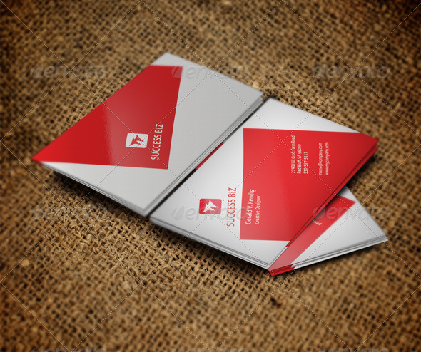Attractive Premium Business Card - Corporate Business Cards