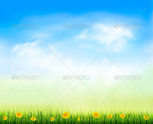 Summer Gaze Background with Blue Sky - Flowers & Plants Nature