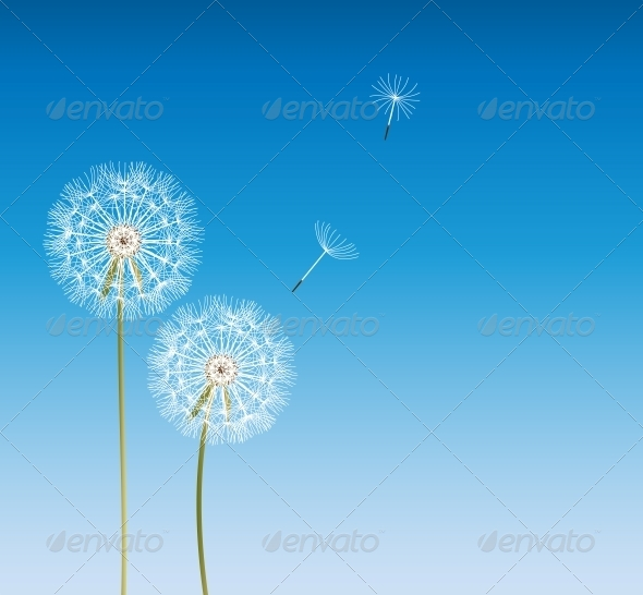 Abstract Dandelion Background  Vector Illustration - Flowers & Plants Nature
