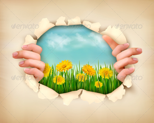 Retro Nature Background with Grass and Flowers  - Flowers & Plants Nature