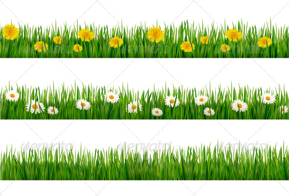 Three Nature Backgrounds of Green Grass - Flowers & Plants Nature