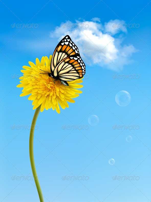 Nature Background with Butterfly - Flowers & Plants Nature