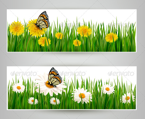 Two Banners with Butterflies and Flowers - Flowers & Plants Nature