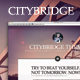 CityBridge — Retina Tumblr Blog Theme Nulled
