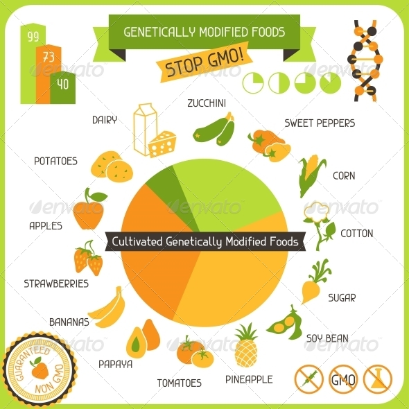 Information Poster Genetically Modified Foods - Food Objects
