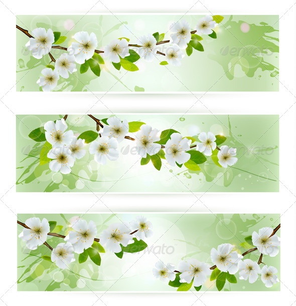 Three Nature Banners with Blossoming Tree Branches - Flowers & Plants Nature