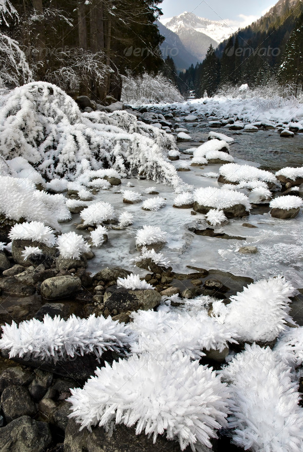 Alpine Valley in Winter - Stock Photo - Images