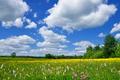 Spring Landscape - PhotoDune Item for Sale