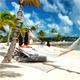 Tropical Landscape - VideoHive Item for Sale