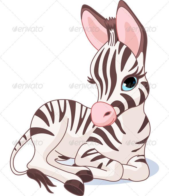 Cute Zebra Foal - Animals Characters