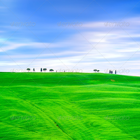 Tuscany, cypress trees and green fields. San Quirico Orcia, Italy. - Stock Photo - Images