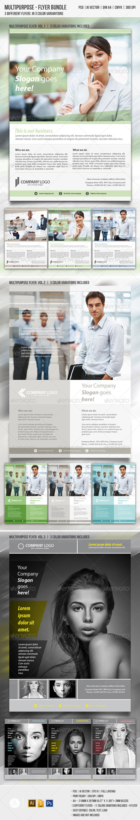 Multipurpose Flyer Bundle - Corporate Flyers