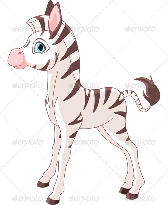 Zebra Foal - Animals Characters