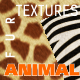 Fur Animal Texture Backgrounds - GraphicRiver Item for Sale