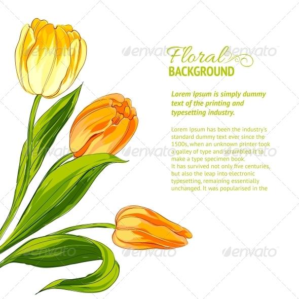 Tulip Bouquet. - Flowers & Plants Nature
