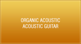 Organic Acoustic - Acoustic Guitar