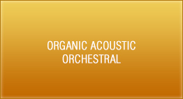 Organic Acoustic - Orchestral